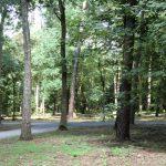Bestattungswald Dorsten
